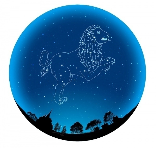 Who discovered the first constellation?