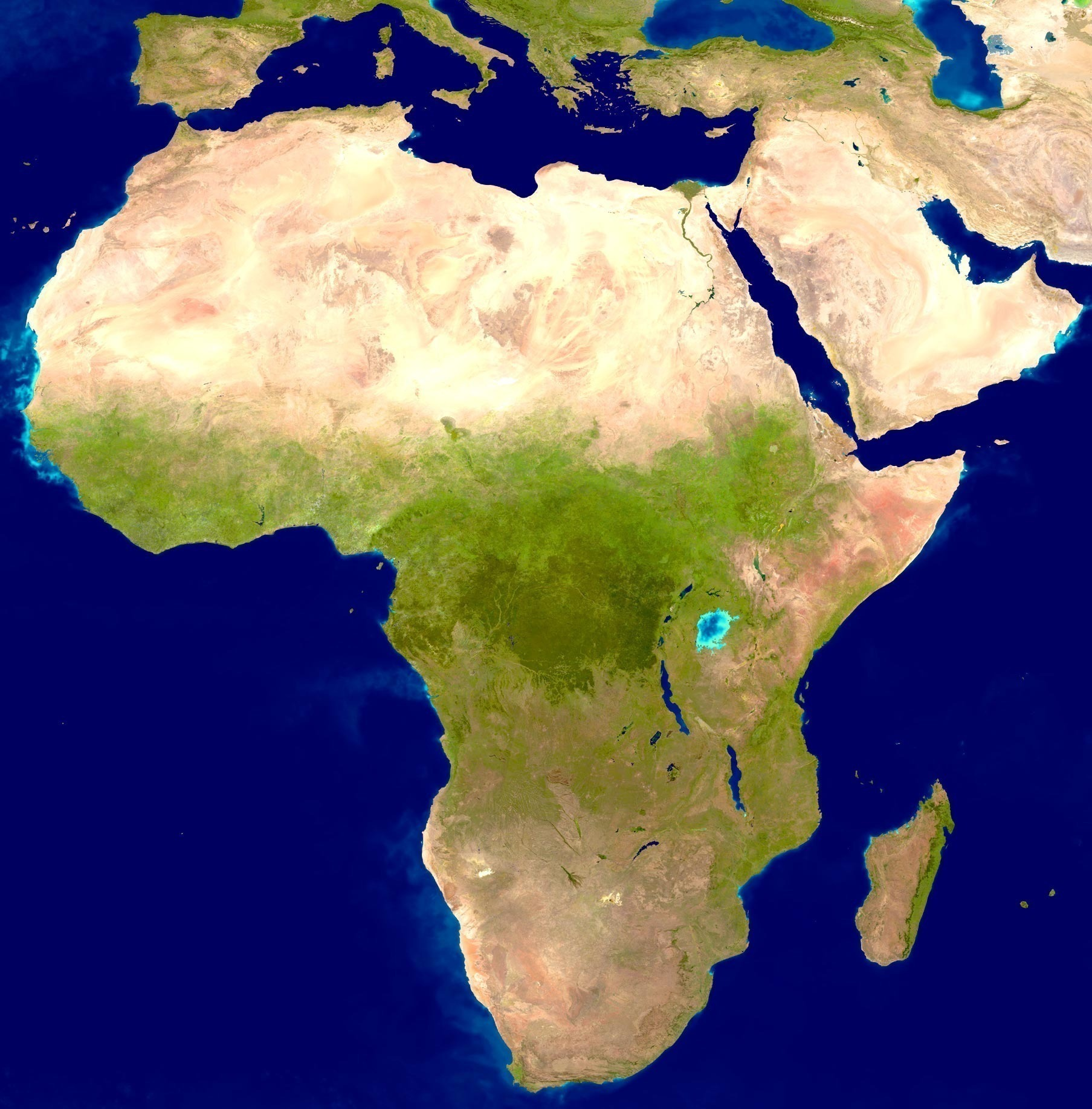 Who discovered Africa